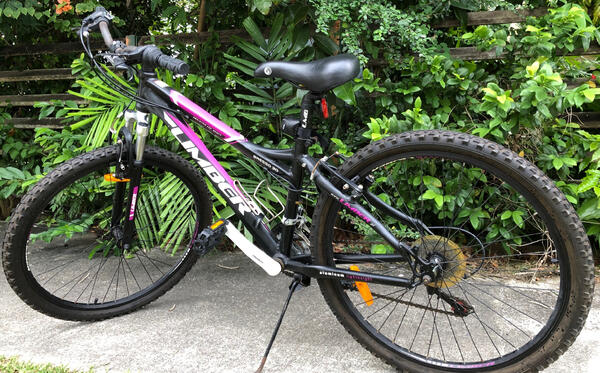 Mountain Bike: Rarely Used, Like New with Free Delivery   Togoparts Rides