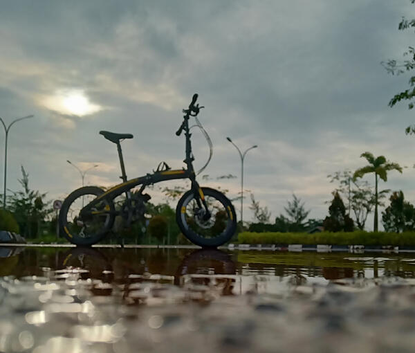Litle bee | Togoparts Rides
