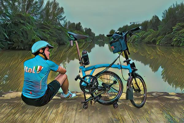 Bluey   Togoparts Rides