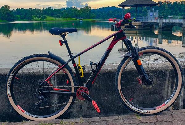 Diwata | Togoparts Rides