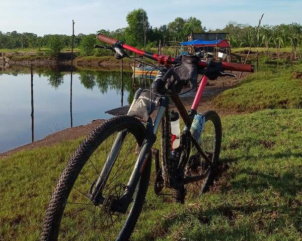 Xcontrol | Togoparts Rides