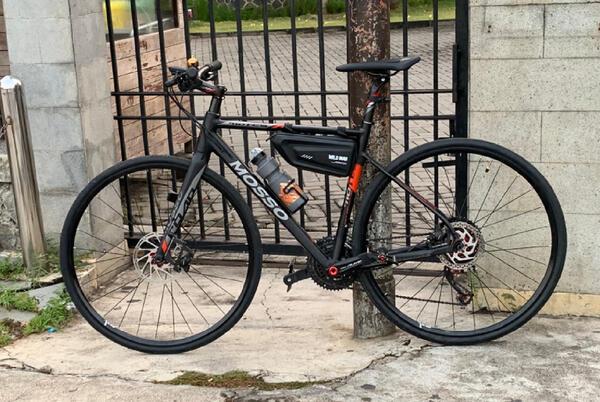 Black Stallion | Togoparts Rides