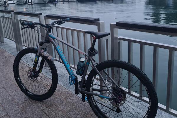 Blue | Togoparts Rides
