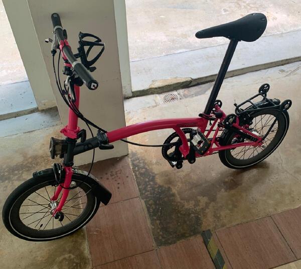 Baby Pinkie    Togoparts Rides