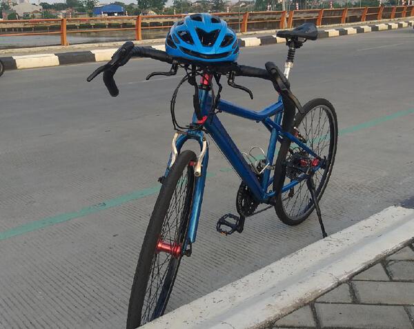 Blue Devil Aleocadale | Togoparts Rides