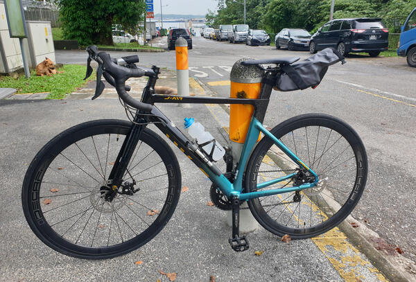 Becky | Togoparts Rides