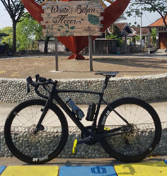 Black Cat S8D | Togoparts Rides