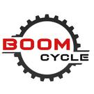 Boom Cycle Pte Ltd