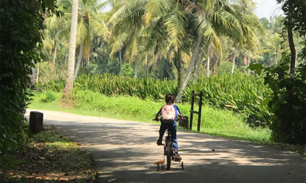 NParks considering first-aid facility on Pulau Ubin for cyclists