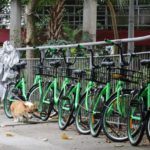 Government Working with Bike-Sharing Firms to Curb Rental Bicycle Growth