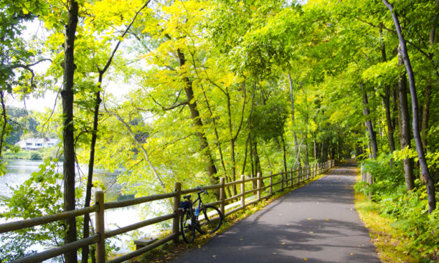 5 Beautifully Scenic Cycling Trails in Singapore