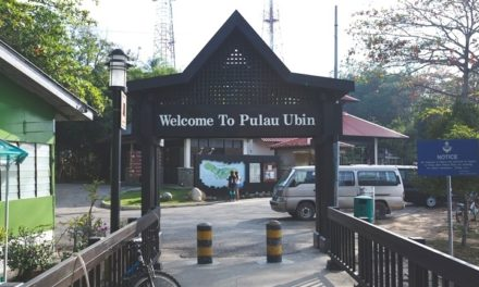 My personal rants@2005 TGP Mass Ride #1@Pulau Ubin