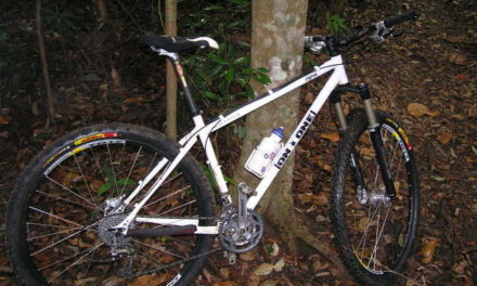 On One 29er Review