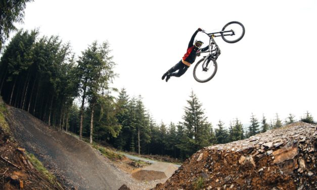 New XQUARONE DH Series : Released