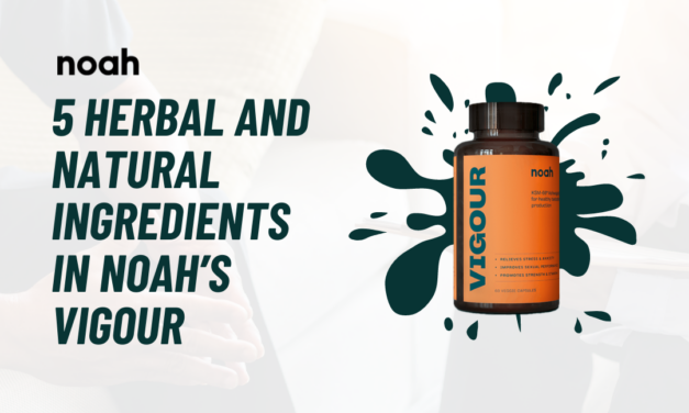 5 Herbal And Natural Ingredients in Noah's VIGOUR that support Men's Health